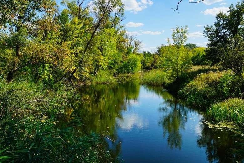 Что держит веси на плаву… река Вербовка