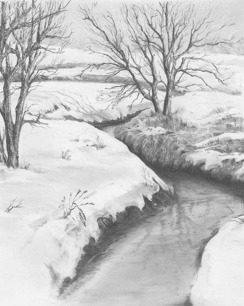 Что держит веси на плаву… река Нагольная