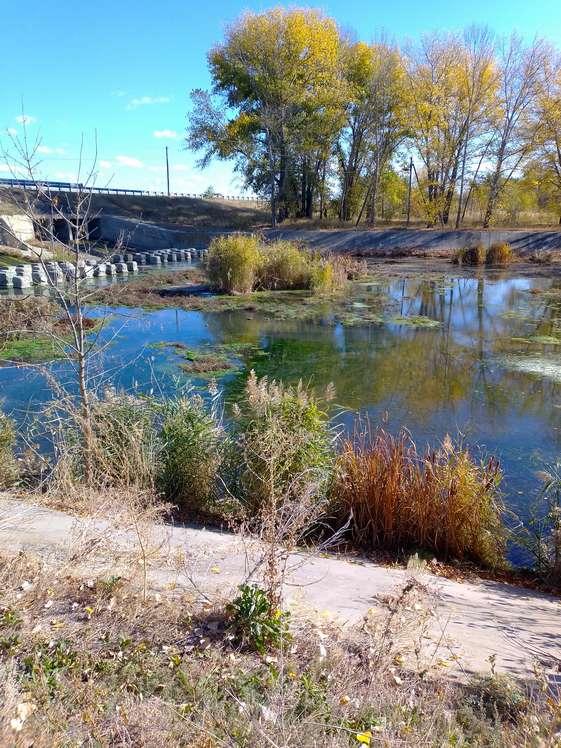 В Кашарах начали чистить русло реки Ольховой