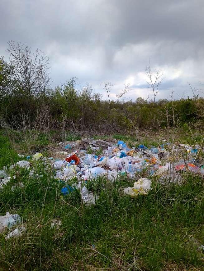 Проблема твердых бытовых отходов не уходит