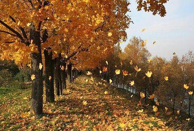 Осенние будни района