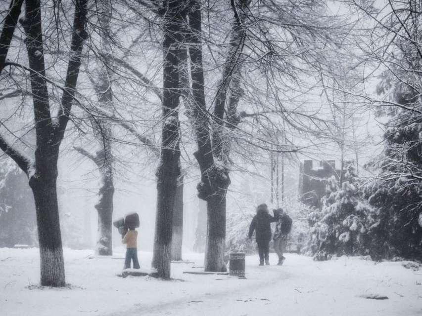 Арктические морозы ударят в Ростовской области в конце недели