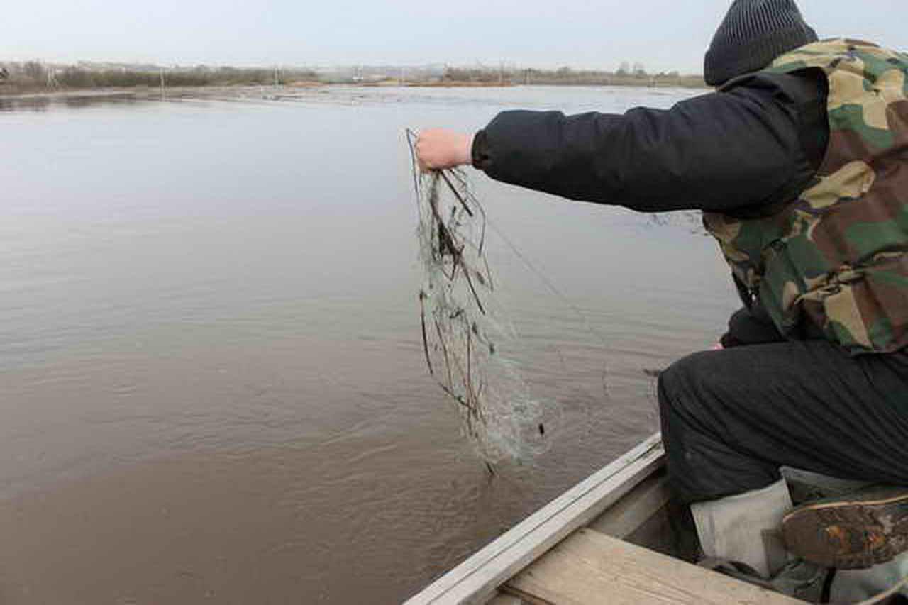 Выявлен факт незаконной добычи рыбы
