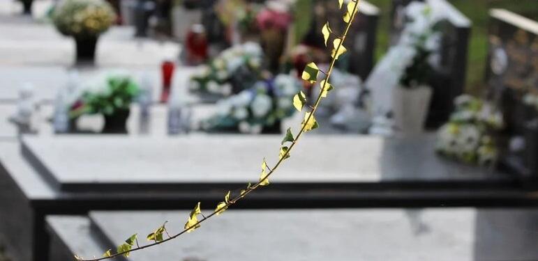 На одном из кладбищ Ростова построят крематорий