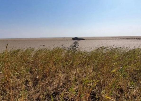 Дончан шокировал полностью обмелевший Таганрогский залив